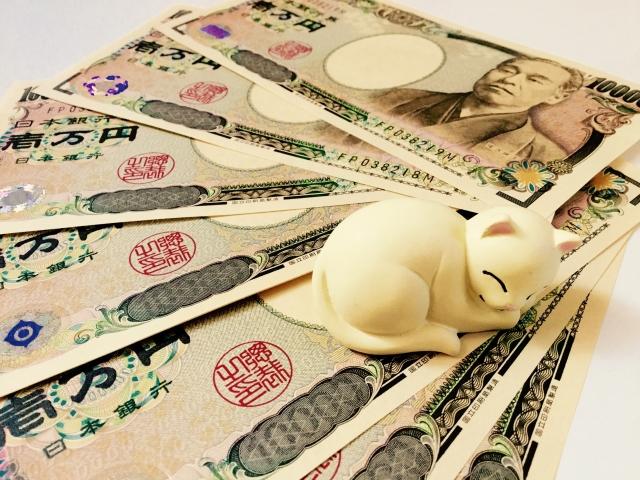 1万円札と猫