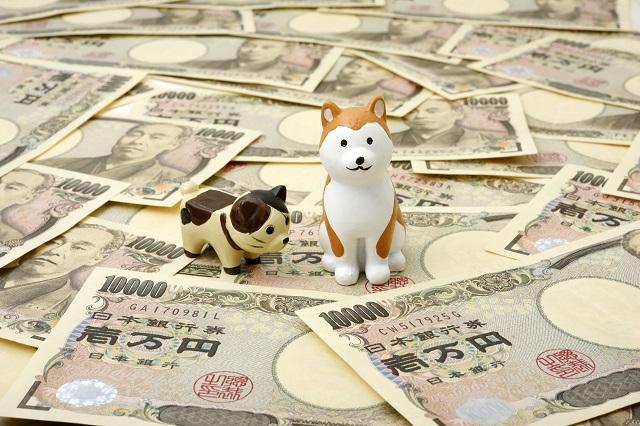 ペットとお金