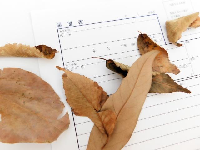 履歴書と枯れ葉