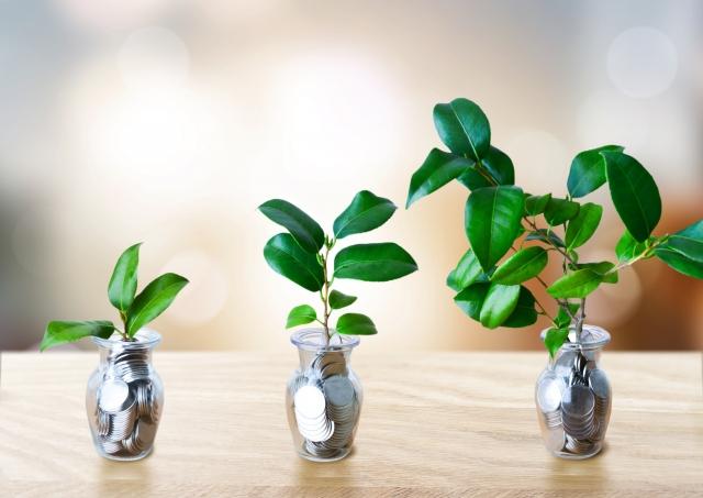葉っぱの成長とお金